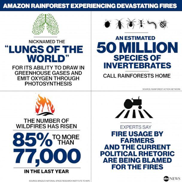 Amazon Rainforest Fires (ABC NEWS)