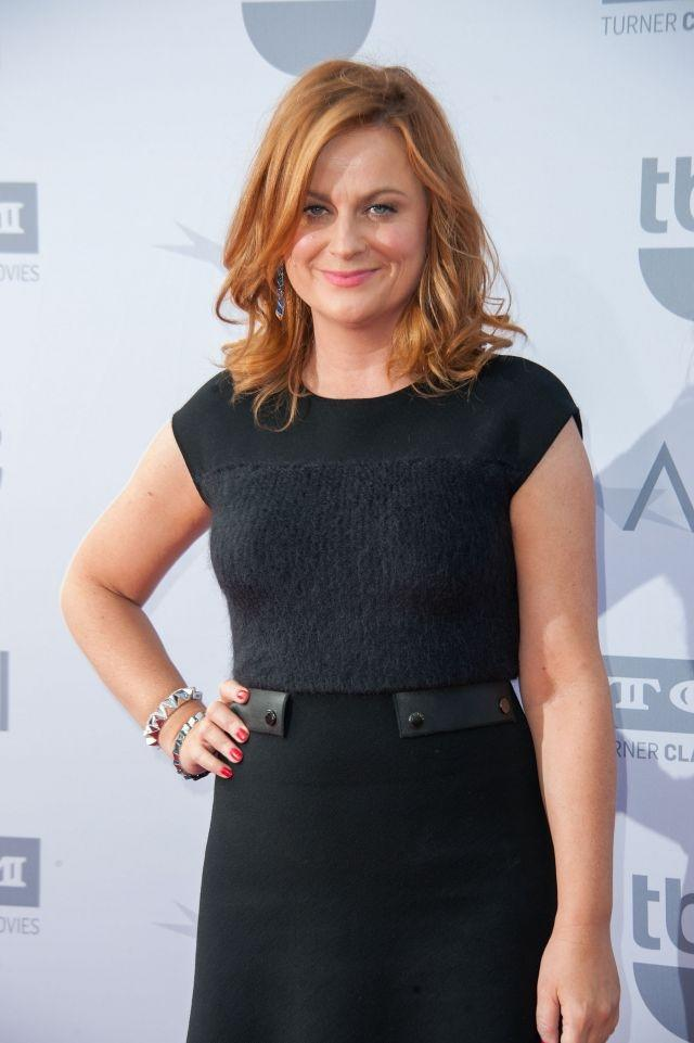amy poehler and nick offerman land new hosting gig. Black Bedroom Furniture Sets. Home Design Ideas