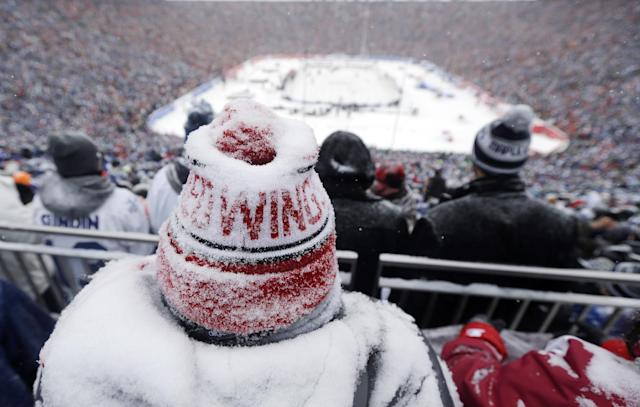A Detroit Red Wings fan, coated with snow, watches during the third period of the Winter Classic outdoor NHL hockey game against the Toronto Maple Leafs at Michigan Stadium in Ann Arbor, Mich., Wednesday, Jan. 1, 2014. (AP Photo/Carlos Osorio)