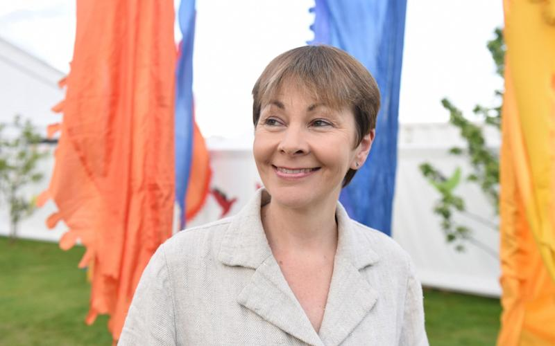 Caroline Lucas, the co-leader of the Green Party - Credit: Jay Williams for The Telegraph