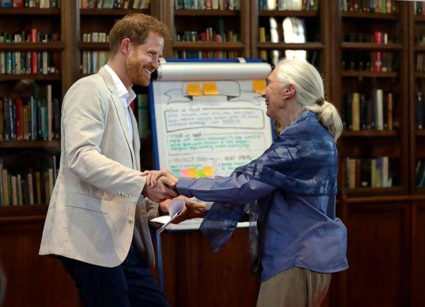 PHOTO: Prince Harry and Dr Jane Goodall dance as he attends Dr Jane Goodall's Roots & Shoots Global Leadership Meeting at St. George's House, Windsor Castle in England, July 23, 2019. (Kirsty Wigglesworth/AP)