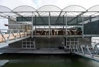"""The three-storey glass and steel platform aims to show the """"future of breeding"""" (AFP/John THYS)"""