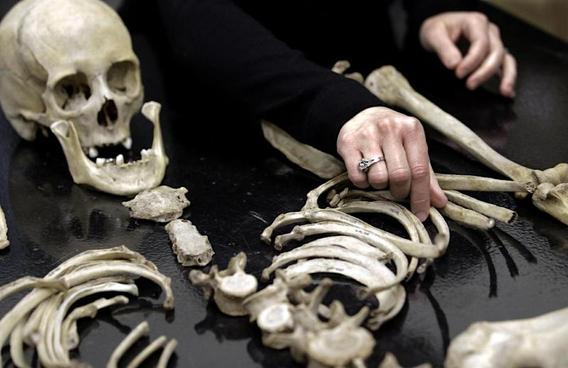 Kate Spradley, an assistant professor at Texas State University, arranges some skeletal remains at the school's Forensic Anthropology Research Facility, Thursday, Feb. 9, 2012, in San Marcos, Texas. What they're finding at the research facility debunks some of what they and other experts believed about estimating time of death for a person whose remains are found outdoors and exposed to the environment. (AP Photo/David J. Phillip)