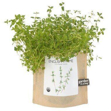 "<a href=""http://well.ca/products/potting-shed-creations-thyme_73350.html"">Thyme in a bag $13.96 from Well.ca.</a>"