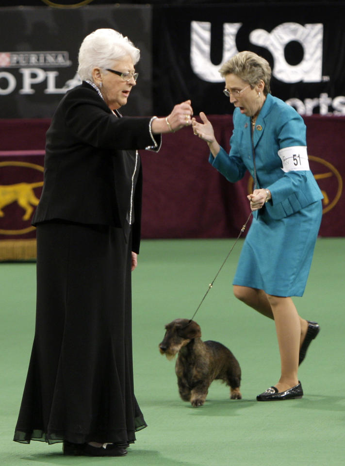 Handler Cheri Koppenhaver, right, reacts after judge Patricia Laurans, left, declared Cinders, a wirehaired dachshund, the winner of the hound group at the 136th annual Westminster Kennel Club dog show in New York, Monday, Feb. 13, 2012. (AP Photo/Seth Wenig)