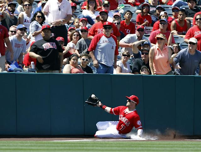 Los Angeles Angels left fielder Collin Cowgill (7) slides into the fence to catch the ball in foul territory hit by Kansas City Royals' Jimmy Paredes in the seventh inning of a baseball game on Sunday, May 25, 2014, in Anaheim, Calif. (AP Photo/Alex Gallardo)
