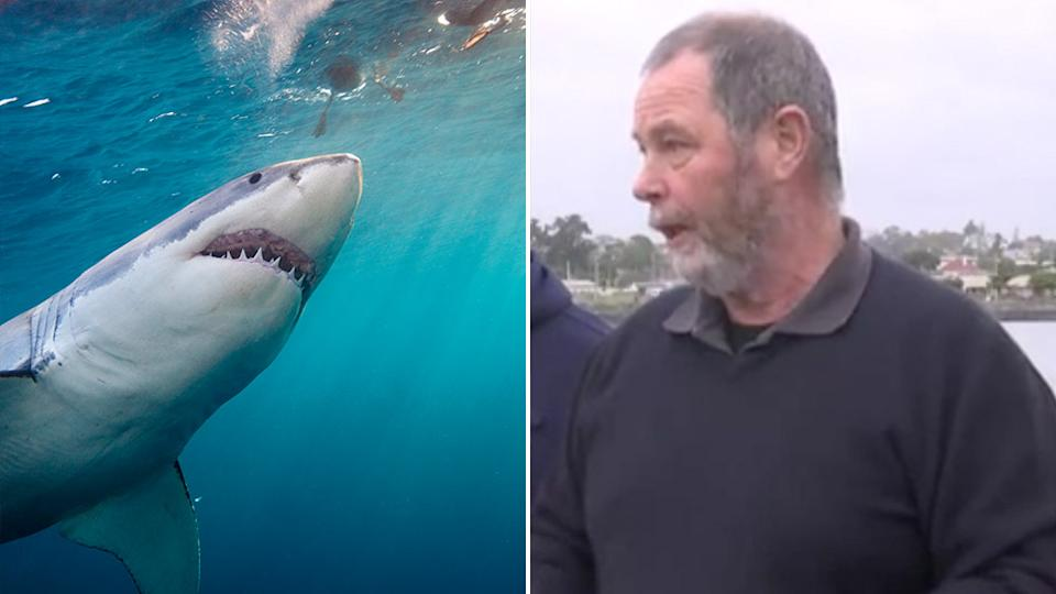 The boy's grandfather, David Arnott (right), speaks to media after the Tasmanian shark attack. Pictured left is a stock image of a shark in water.