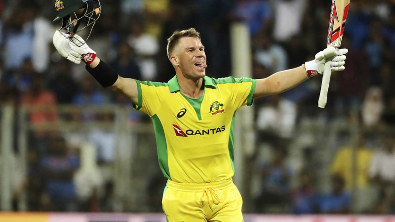 David Warner, pictured here celebrating after scoring a century against India.
