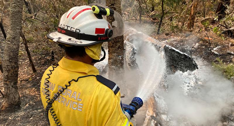 NSW Rural Fire Services volunteer Darren Carter uses a hose on part of a forest.