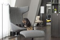 """<p>This dog-friendly hotel in London's City invites hounds of all shapes and sizes (and their owners) to cosy up on the heated Secret Garden terrace and enjoy an indulgent hot chocolate (you) and healthy treats (your dog).</p><p>A minute's walk from Liverpool Street Station, <a href=""""https://go.redirectingat.com?id=127X1599956&url=https%3A%2F%2Fwww.booking.com%2Fhotel%2Fgb%2Fsouth-place.en-gb.html%3Faid%3D2070929%26label%3Ddog-friendly-london-hotels&sref=https%3A%2F%2Fwww.redonline.co.uk%2Ftravel%2Finspiration%2Fg35033360%2Fdog-friendly-hotels-london%2F"""" rel=""""nofollow noopener"""" target=""""_blank"""" data-ylk=""""slk:South Place Hotel"""" class=""""link rapid-noclick-resp"""">South Place Hotel</a> boasts an urban contemporary style with a rooftop restaurant, cocktail bar and gym.</p><p>The modern rooms here feature their own media hub (perfect for a relaxed evening in), ultra-modern bathrooms and room service throughout the day, in case you and your pooch don't feel like leaving. Book a Studio or Suite 610 to take advantage of free stays for pets.</p><p><a class=""""link rapid-noclick-resp"""" href=""""https://go.redirectingat.com?id=127X1599956&url=https%3A%2F%2Fwww.booking.com%2Fhotel%2Fgb%2Fsouth-place.en-gb.html%3Faid%3D2070929%26label%3Ddog-friendly-london-hotels&sref=https%3A%2F%2Fwww.redonline.co.uk%2Ftravel%2Finspiration%2Fg35033360%2Fdog-friendly-hotels-london%2F"""" rel=""""nofollow noopener"""" target=""""_blank"""" data-ylk=""""slk:CHECK AVAILABILITY"""">CHECK AVAILABILITY</a></p>"""