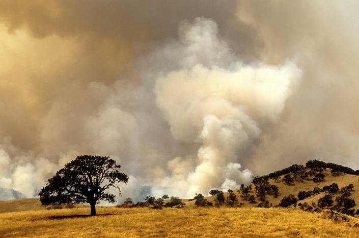 Smoke from a wildfire, one of several that comprise the Deer Zone fires, billows over unincorporated Contra Costa County, Calif., on Sunday, Aug. 16, 2020. Firefighters scrambled to contain multiple blazes, sparked by widespread lightning strikes throughout the region, as a statewide heat wave continues. (AP Photo/Noah Berger)
