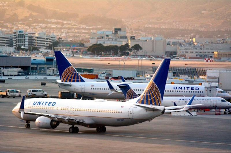 The dog was travelling in the cabin on a United flight to New York. Photo: Getty