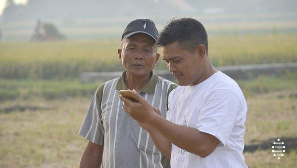 Farmers and Field Officer Using HARA Mobile Application