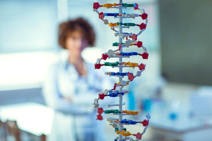 A teaching model of DNA, with a woman wearing a white coat and stethoscope in the background