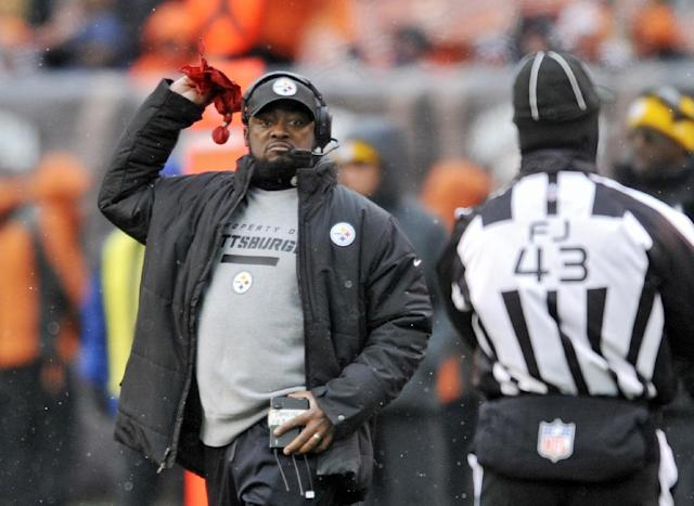 Pittsburgh Steelers head coach Mike Tomlin throws the challenge flag in the second half of an NFL football game against the Cleveland Browns, Sunday, Nov. 24, 2013. (AP Photo/David Richard)