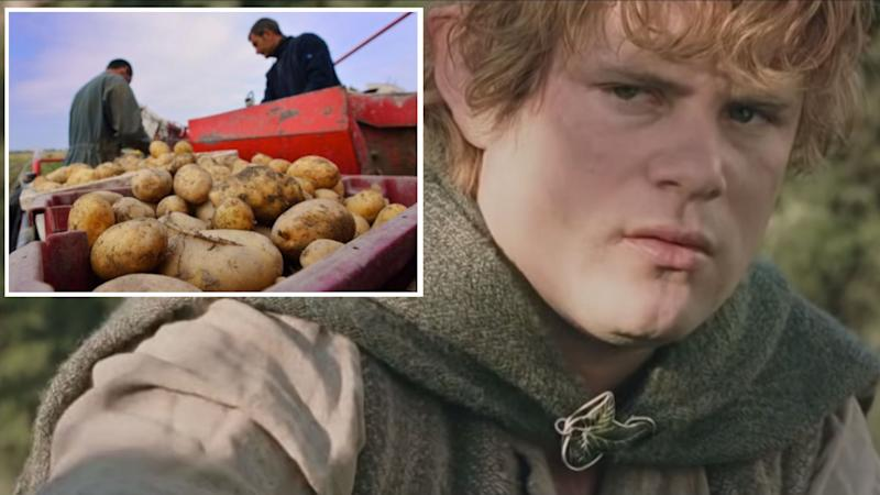 A composite image of Sean Astin depicting Samwise Gamgee in the film, The Lord of the Rings: The Two Towers, and an image of La Bonnotte potatoes being harvested. Images: Île de Noirmoutier, New Line Cinema