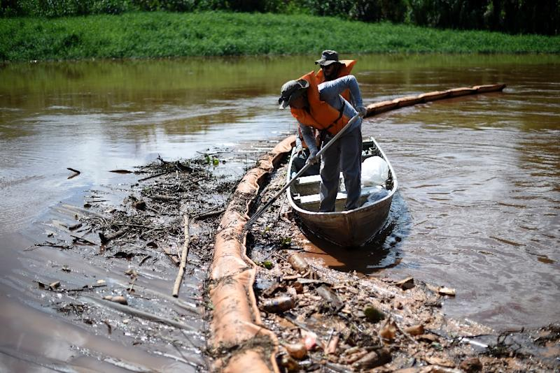 Researchers collect dead fish from a retention membrane installed at the Paraopeba River, Brazil, to try to retain mud, after the collapse of a dam (AFP Photo/DOUGLAS MAGNO)