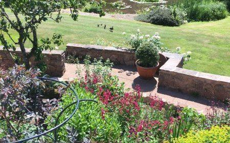 The terrace borders at Shutelake are full of perennials in warm late-summer shades of dark red, copper and tangerine - National Garden Scheme