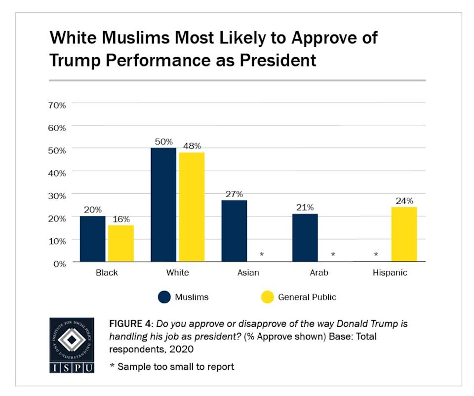 Looking at racial breakdowns, 50% of white Muslims approve of the way Donald Trump is handling his job as president, on par with 48% of white Americans in the general public. (Photo: Institute for Social Policy and Understanding)