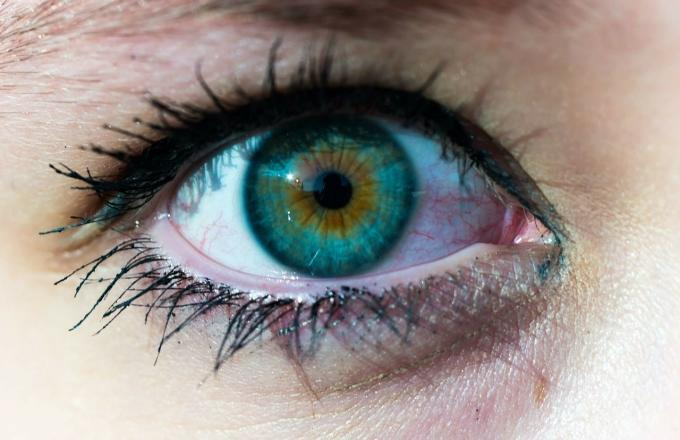 Scientists May Have Finally Discovered a Cure for Blindness