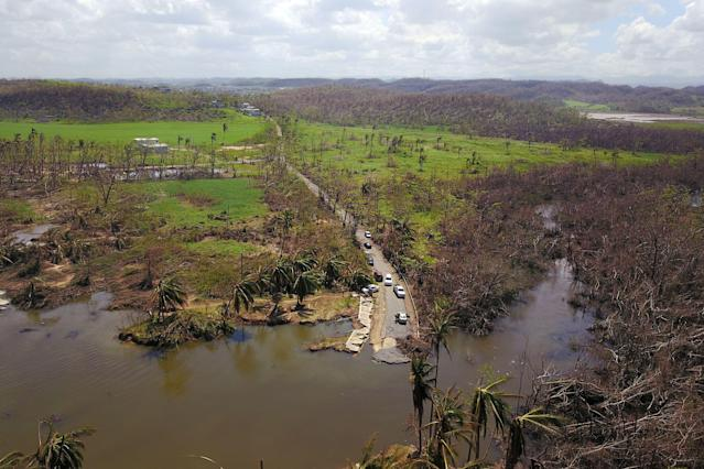 <p>An aerial view of an area that was reclaimed by a nearby mangrove during the passing of Hurricane Maria in Manati, Puerto Rico on Oct. 6, 2017. (Photo: Ricardo Arduengo/AFP/Getty Images) </p>