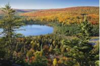 """<p><strong>Where to go:</strong> The Superior National Forest – including this view of Oberg Lake from Oberg Mountain — offers scenic vistas as sugar maples, tamaracks, and birches start transitioning. Try following this <a href=""""https://www.fs.usda.gov/recarea/superior/recreation/scenicdrivinginfo/recarea/?recid=75017&actid=105"""" rel=""""nofollow noopener"""" target=""""_blank"""" data-ylk=""""slk:Sawtooth Mountains Fall Color Tour"""" class=""""link rapid-noclick-resp"""">Sawtooth Mountains Fall Color Tour</a> for a scenic drive.</p><p><strong>When to go: </strong>Early October</p><p><a class=""""link rapid-noclick-resp"""" href=""""https://go.redirectingat.com?id=74968X1596630&url=https%3A%2F%2Fwww.tripadvisor.com%2FHotels-g28944-Minnesota-Hotels.html&sref=https%3A%2F%2Fwww.redbookmag.com%2Flife%2Fg34045856%2Ffall-colors%2F"""" rel=""""nofollow noopener"""" target=""""_blank"""" data-ylk=""""slk:FIND A HOTEL"""">FIND A HOTEL</a></p>"""