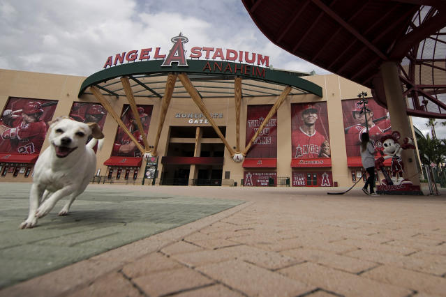 A woman walks her dog by an empty Angel Stadium of Anaheim in Anaheim, Calif., March 25, 2020. (AP Photo/Chris Carlson)