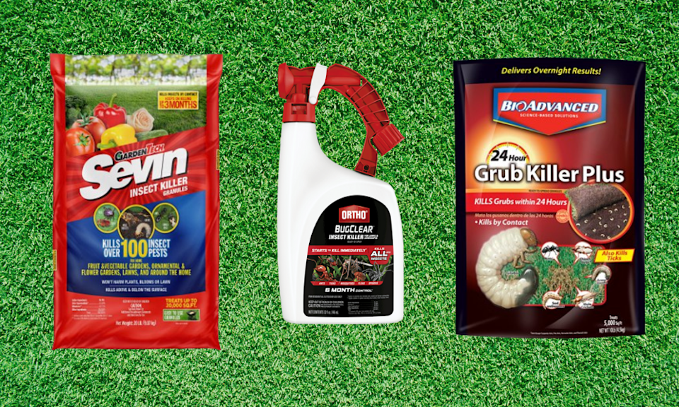 Protect your lawn from hungry armyworms with these treatments. (Photo: Lowe's)