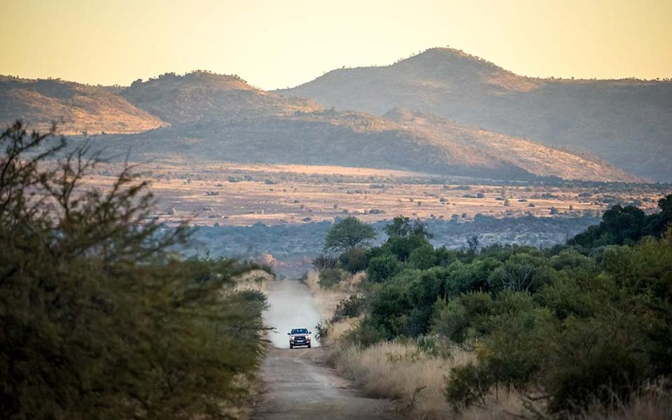 There's a high density of wild animals in Kruger National Park, including the Big Five - SASIPA MUENNUCH