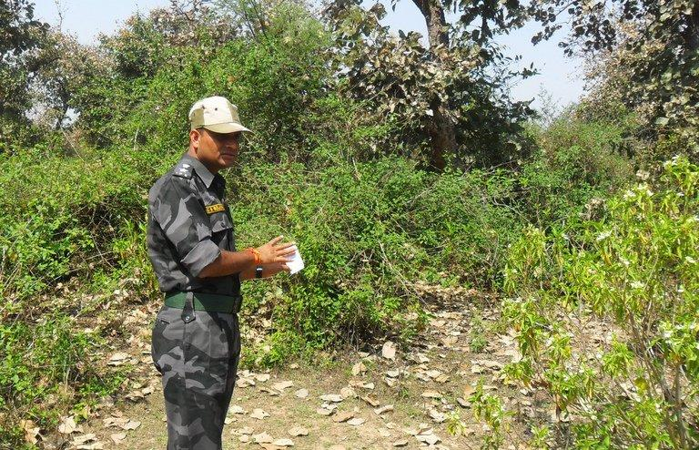 A photograph taken on March 16, 2013, shows an Indian security official examining the site where a Swiss female tourist was raped near Gwalior. Five villagers have confessed to gang-raping a Swiss tourist in central India, police said Sunday, in an incident that renewed focus on the rampant violence against women in the country