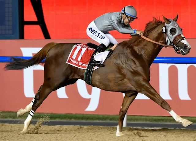 <span>Arrogate has 16lbs to spare over his rivals</span> <span>Credit: AP Photo/Martin Dokoupil </span>