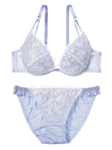 PJ_Days_Light_Snowy_Garden_Bra_a.png (365×488)