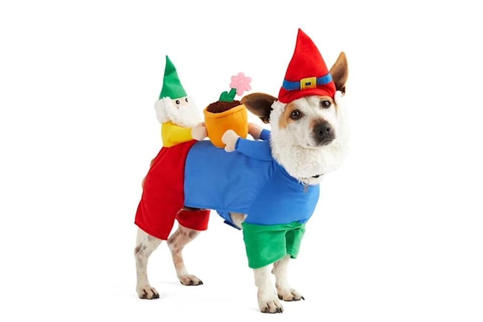 """<p>An on-brand costume for pups who spend too much time digging up the garden. </p> <p><strong>Buy it!</strong> Gnome Sweet Gnome Dog Illusion Costume, $27.99; <a href=""""https://www.anrdoezrs.net/links/8029122/type/dlg/sid/PEO25HalloweenCostumesforDogsthatWillHaveTrickorTreatersHowlingwithJoykbender1271PetGal12909733202109I/https://www.petco.com/shop/en/petcostore/product/bootique-gnome-sweet-gnome-dog-illusion-costume-medium-3344749"""" rel=""""sponsored noopener"""" target=""""_blank"""" data-ylk=""""slk:Petco.com"""" class=""""link rapid-noclick-resp"""">Petco.com</a></p>"""