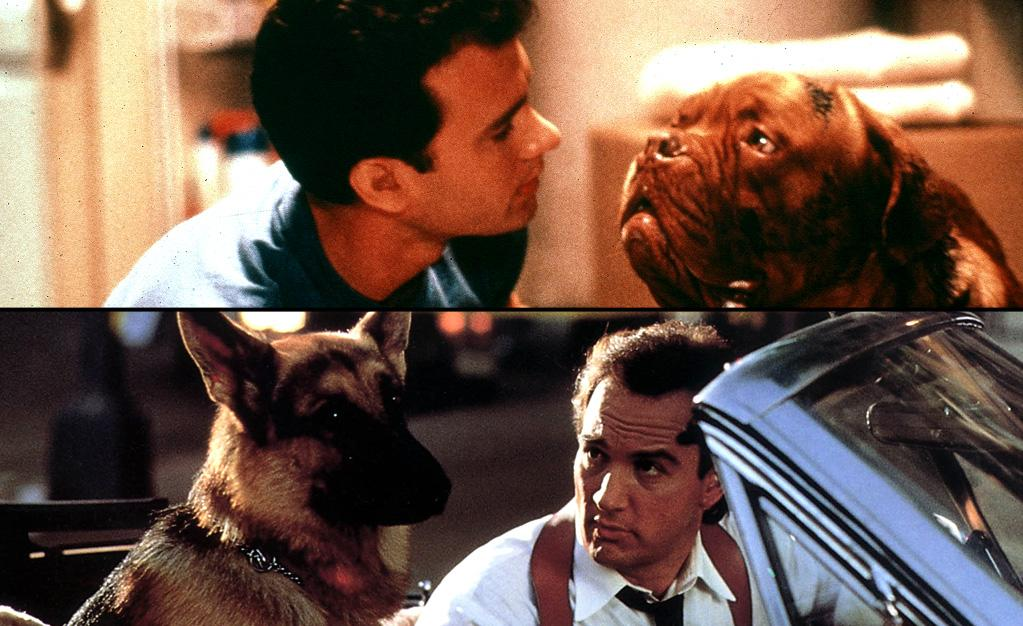 "<span style=""text-decoration:underline;""></span><a target=""_blank"" href=""http://movies.yahoo.com/movie/turner-and-hooch/"">""Turner & Hooch""</a> (July 28, 1989)<br><br>   <b>Synopsis:</b> Scott Turner, a compulsively neat detective whose tidy world goes to the  dogs when he's forced to team up with the only witness to a crime -- a  drooling slob of a junkyard dog named Hooch. Not exactly man's best  friend, Hooch turns Turner's life upside down, wrecking Turner's home,  career, and budding romance.<br><b>Score on Rotten Tomatoes:</b> 62%<br><b>U.S. box office:</b> $71m<br><span style=""text-decoration:underline;""><br></span><a target=""_blank"" href=""http://movies.yahoo.com/movie/k9/"">""K-9""</a> (April 28, 1989)<br><br>   <b>Synopsis:</b> Comedy about a cop and his German sheperd partner who break up a drug ring.<br><b>Score on Rotten Tomatoes:</b> 22%<br><b>U.S. box office:</b> $43m"