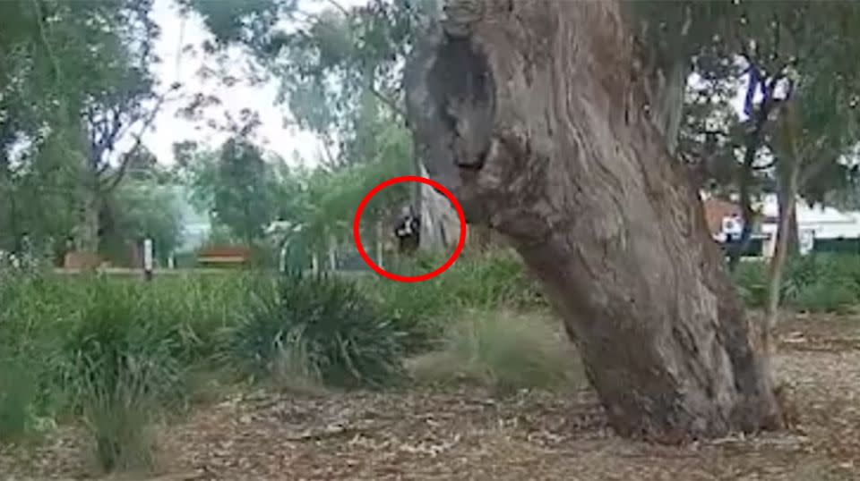 The parking officer can be seen emerging from behind a tree and writing up a $200 fine for the young dad. Source: Michael Pape