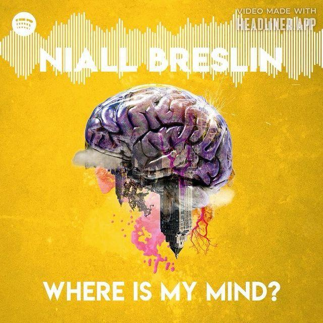 """<p>Mindfulness expert and musician Niall Breslin's Where is My Mind, about the impact our manic, overwhelming society has on us, is even more relevant now than it was when it first launched in 2019. Our lives might have been forcefully slowed down, but the world is even more confusing, unsettling and anxiety-inducing than ever. Breslin teaches listeners the basics of mindfulness, meditation and self-care in a way that will help you to better see the best in the world.</p><p><a class=""""link rapid-noclick-resp"""" href=""""https://podcasts.apple.com/gb/podcast/where-is-my-mind/id1470956619"""" rel=""""nofollow noopener"""" target=""""_blank"""" data-ylk=""""slk:DOWNLOAD NOW"""">DOWNLOAD NOW</a></p><p><a href=""""https://www.instagram.com/p/CFSivbphRVA/?utm_source=ig_embed&utm_campaign=loading"""" rel=""""nofollow noopener"""" target=""""_blank"""" data-ylk=""""slk:See the original post on Instagram"""" class=""""link rapid-noclick-resp"""">See the original post on Instagram</a></p>"""