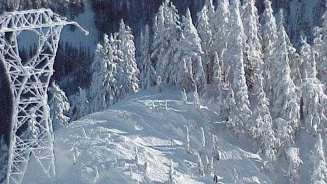 Washington Avalanche Kills Three Advanced Skiers