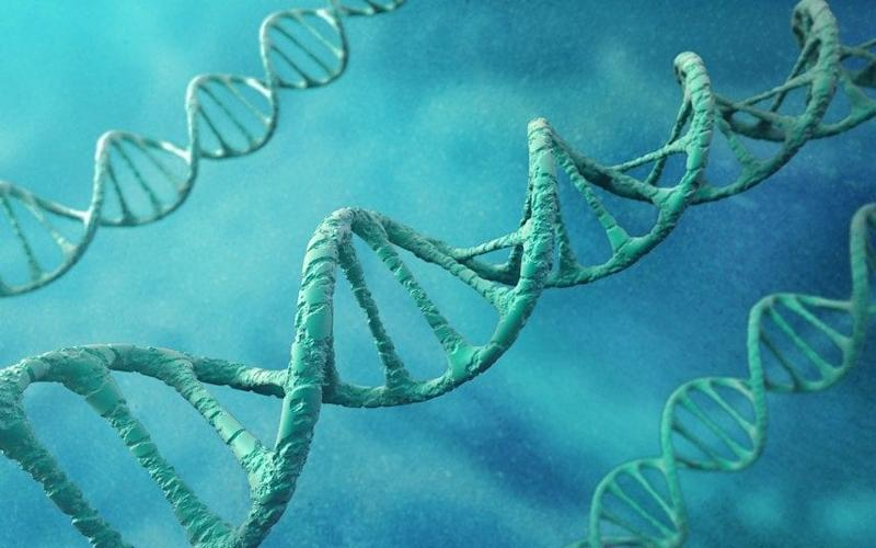 Scientists discovered differences in DNA code which could be linked to sexuality