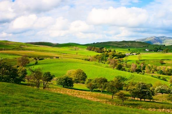 British countryside is at risk