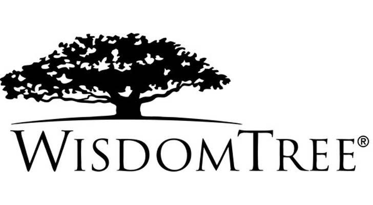 Midcap ETFs To Buy: WisdomTree U.S. MidCap Dividend Fund (DON)