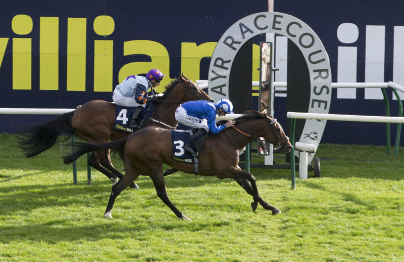 William Hill shares fall after profit warning