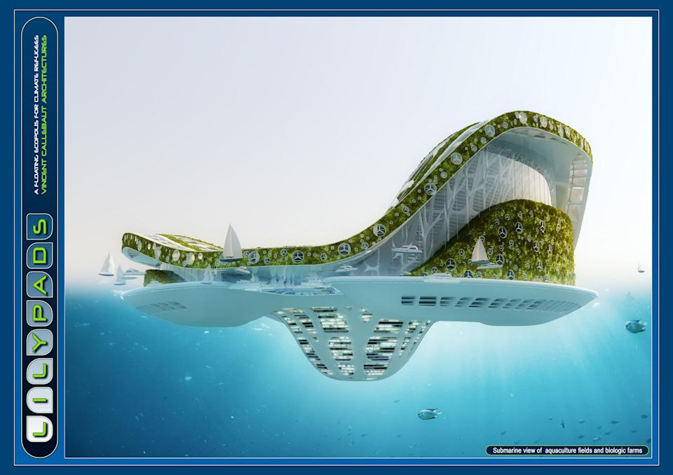 It is a true amphibian half aquatic and half terrestrial city, able to accommodate 50,000 inhabitants and inviting the biodiversity to develop its fauna and flora around a central lagoon of soft water collecting and purifying the rain waters.