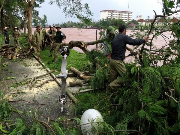 Rescue team workers clearing out trees in Vietnam that were affected due to heavy downpour and storm. (Photo credit: Reuters)