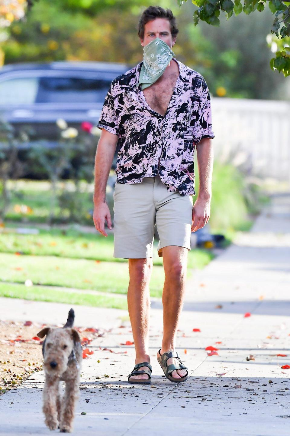 <p>Armie Hammer brings his dog along to visit a friend on Wednesday in L.A.</p>