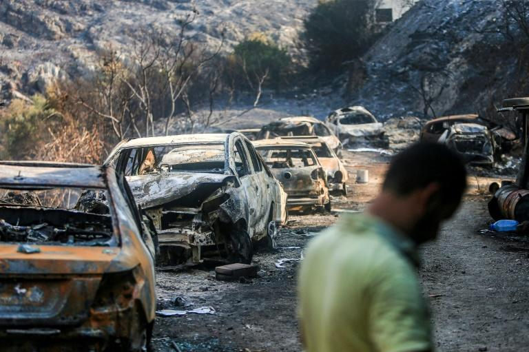 The wildfires have devoured swathes of land in several parts of Lebanon and Syria (AFP Photo/-)
