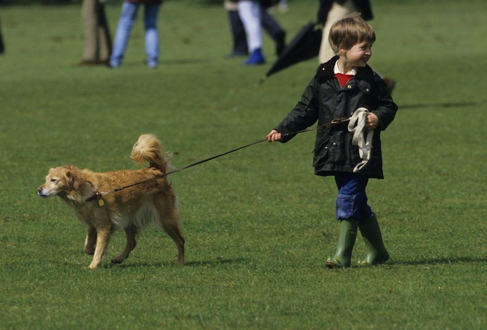 <p>Looking casual in a Barbour jacket, jeans, and wellies, a young Prince William walks a pet dog while at the polo grounds in Cirencester in 1987. </p>