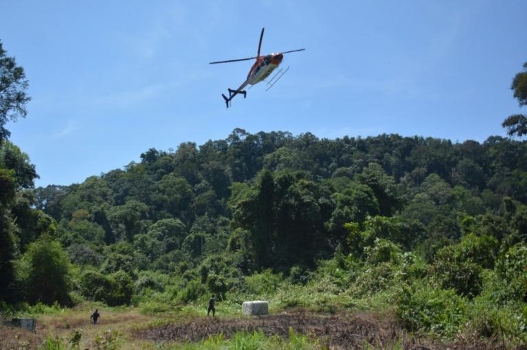 An orangutan in a cage is delivered by helicopter in Central Kalimantan, Borneo, Indonesia