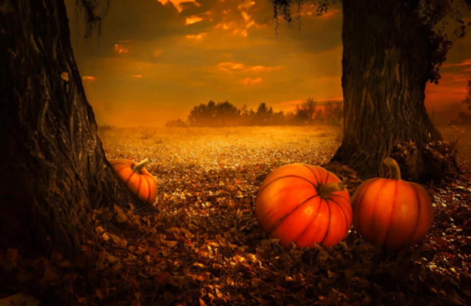October 31 - The Haunting History of Halloween