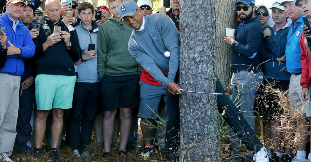 Painful par for Tiger Woods. (via screenshot)