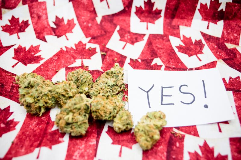 Dried cannabis buds lying atop dozens of miniature Canadian flags and next to an index card with the word yes written on it.